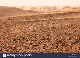 stone desert stone desert erg chegaga sahara desert morocco north africa