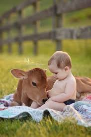mom takes photos of baby son with baby cow