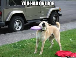 Funny Fail Memes - you had one job dog by ben meme center