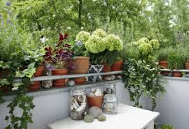 pflanzen fã r den balkon chestha dekor balkon winter