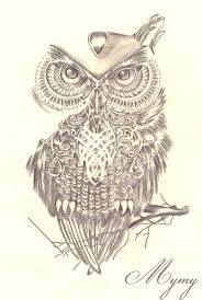 owl design by mymy la patate on deviantart