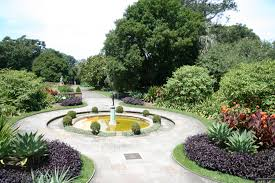 Mt Annan Botanical Garden Royal Botanic Gardens Sydney Botanic Garden In New South Wales