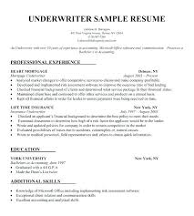 easy resume template free download here are easy resume maker free basic resume templates download