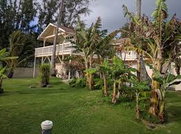 Waimanalo Beach Cottage by Sherwood Forest Hawaii Around Guides