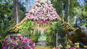 Toledo Botanical Garden by The Orchid Show Thailand At Nybg New York Tickets N A At New