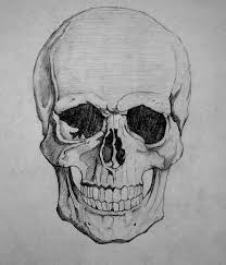 draw how to draw a skull by howtodrawitall on deviantart
