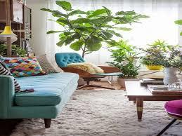 Wohnzimmer Einrichten Pflanzen Wohnzimmer Pflanzen Design 09 Wohnung Ideen