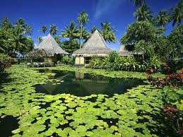 thatched huts by the water tranquility pinterest tahiti