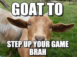Totes Magotes Meme - 51 funniest goat memes photos pictures images gifs picsmine