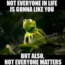 Funny Stalker Memes - just saying rana rene kermit the frog pinterest kermit