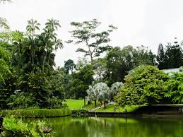 Botanical Garden Pictures by Botanic Garden Ibotanic Garden Definition Youtube