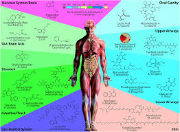 natural products as mediators of disease natural product reports