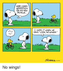 I Hate It When Memes - i here comes woodstock on his new bicycle i hate it when he says