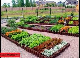 backyard vegetable garden design 20 raised bed garden designs and