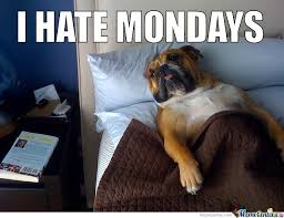 Monday Meme Funny - best funny monday memes we hate monday