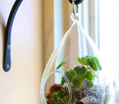 diy terrarium 7 steps with pictures