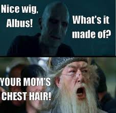 What Memes Mean - 16 hysterical harry potter and mean girls mash up memes lol