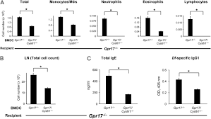 gpr17 regulates immune pulmonary inflammation induced by house