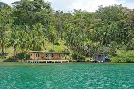 House Over Water Lush Coastal Landscape With Coconut Palm Trees And A House Over
