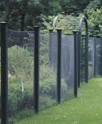 13 best deer proof garden ideas images on pinterest garden