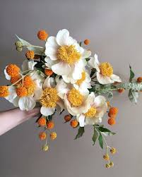 White Flowers Pictures - best 25 orange flowers ideas on pinterest flowers beautiful