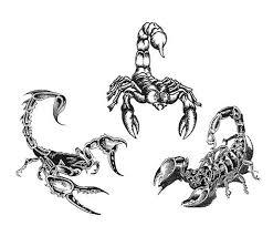 105 wonderful 3d scorpion tattoos