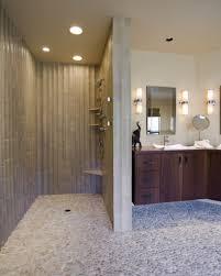 Open Showers No Doors Shower Walk In Shower No Door Showers For Small Bathrooms White