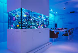 custom fish tank decorations