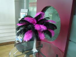 Ostrich Feather Centerpieces Wholesale by Ostrich Feathers Weddingfeather Excellent Quality U0026decorative