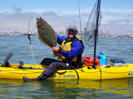 halibut fishing in the bay clavey paddlesports