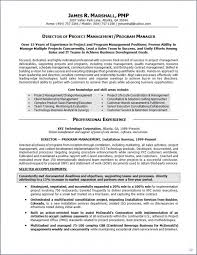 Technical Project Manager Resume Examples by Writing Cv Personal Statement Examples