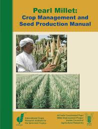 pearl millet crop management and seed production manual pdf