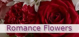 flower delivery washington dc washington d c florists flowers in washington d c dc