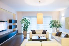 perfect plants for staging your home sell