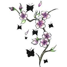 cherry blossoms and butterflies here my