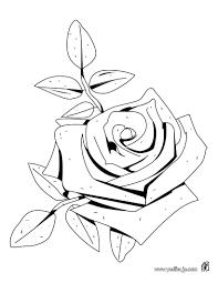 imagenes para colorear rosas dibujos para colorear una rosa es hellokids com