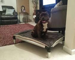 aluminum dog bed dog beds kuranda dog beds