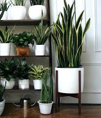 indoor planting flower pots indoor indoor flower pots captivating modern indoor