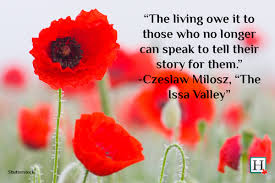 remembering the service to our country remembrance day