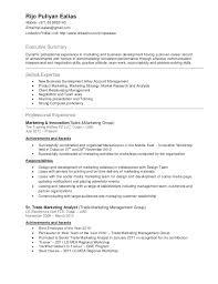 resume format for customer service executive roles dubai islamic bank cv resume writing dubai rijo resume 1 638 jobsxs com