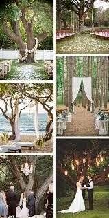 wedding ceremony ideas outdoor wedding ceremony a tree the destination wedding