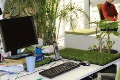 plantes bureau plantes bureau open space recherche bureau