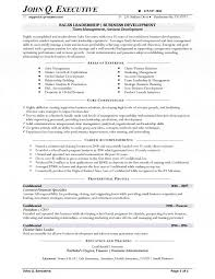 Sample Of Objectives In A Resume by Executive Resume