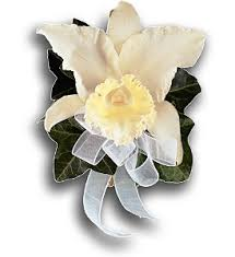 White Orchid Corsage Prom Delivery Woodland Hills Ca Woodland Warner Flowers
