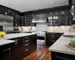 Black Cabinets Kitchen Black And White Cabinetry Kitchen Design And Appliances