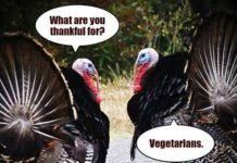 Lol Meme Images - thanksgiving before and after funny dramatic humor lol movie