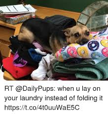 Folding Laundry Meme - tratege rt when u lay on your laundry instead of folding it