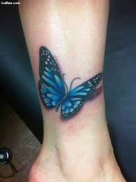 the 25 best blue butterfly ideas on blue