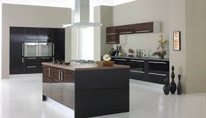 Exellent Kitchen Cabinets High Gloss Doors T In Inspiration Decorating - High gloss lacquer kitchen cabinets