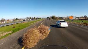 plowing through a tumbleweed on motorcycle youtube